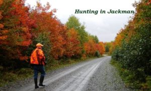 Autumn Hunting
